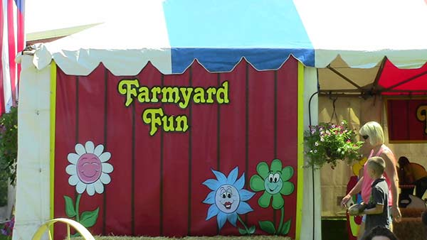 Farmyard Fun
